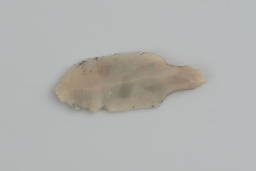 Liściak ahrensburski